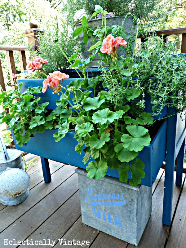 Dresser Planter - such a fun idea for the garden kellyelko.com