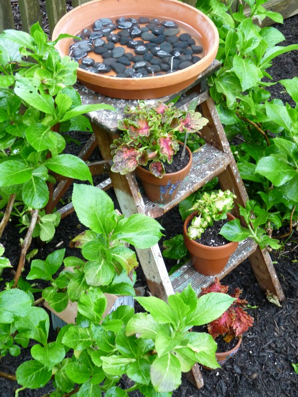 unique garden ideas - make a stepladder birdbath!  eclecticallyvintage.com