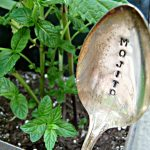 Stamped Silver Spoon