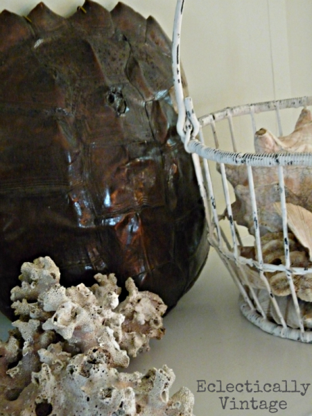 Summer Mantel - shells, coral & turtle shell