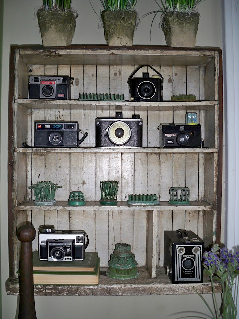 Vintage camera collection - just one of the many unique display ideas in this home kellyelko.com