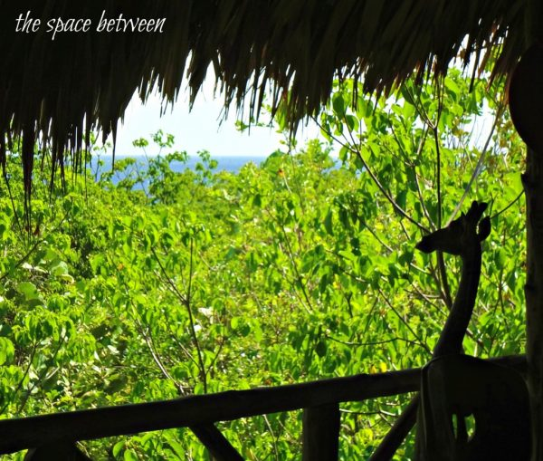 Curacao Treehouse View