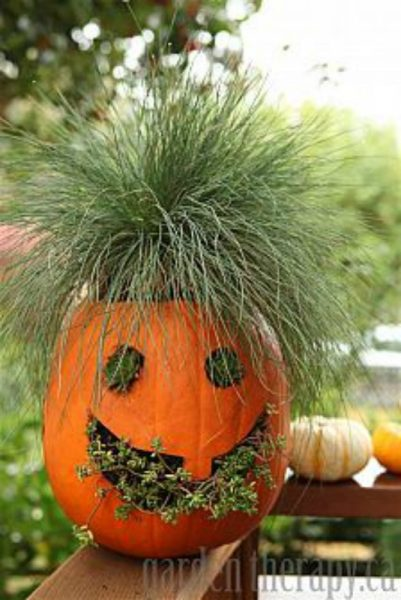 Bedhead Pumpkin