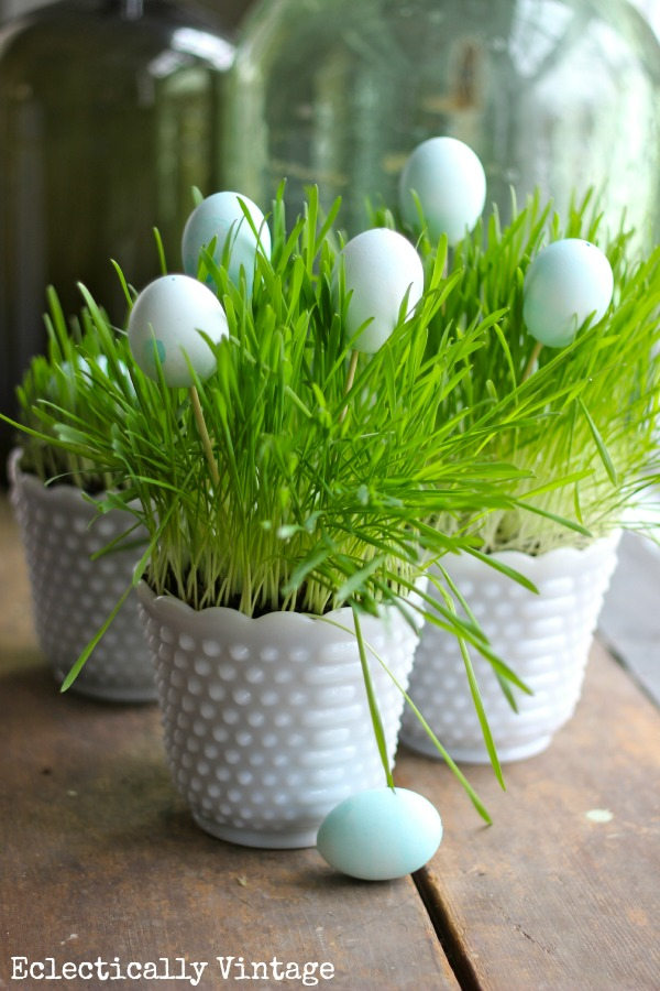 Grow Your Own Spring Grass Centerpiece Kellyelko