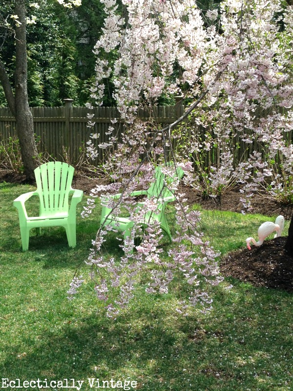 Eclectically Vintage My Week That Was gardening trees spring