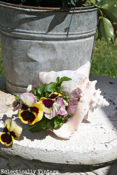 Spring garden tips & a shell planter kellyelko.com
