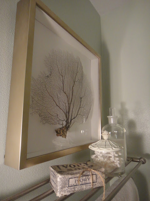 DIY Framed Sea Fan - instant art