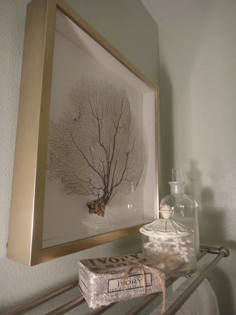DIY Framed Sea Fan - instant art
