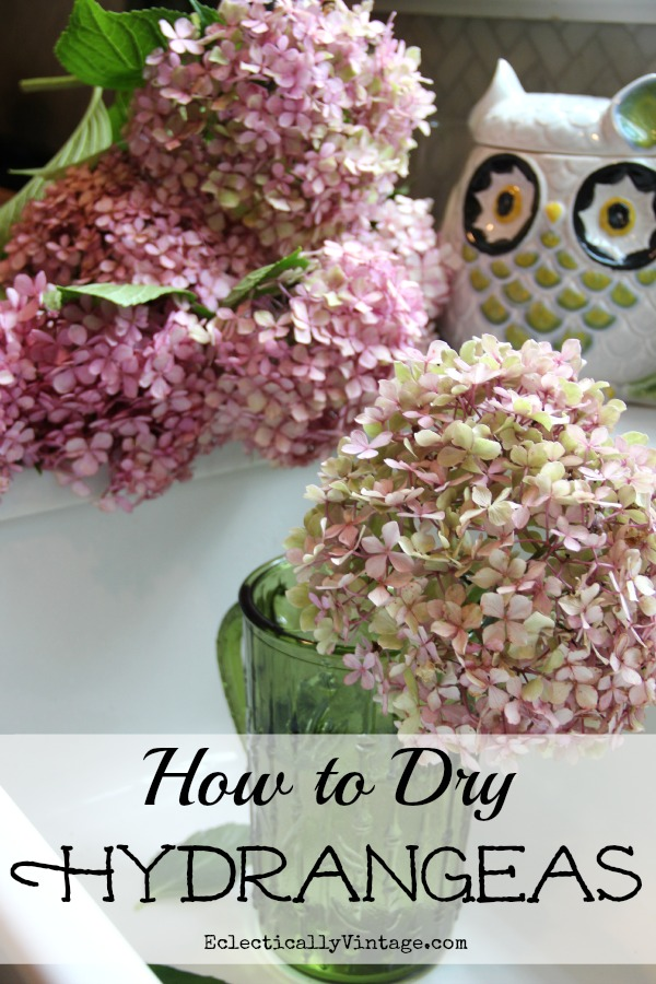 Drying Hydrangeas - follow these simple step by step directions to have beautiful dried flowers all year long!  kellyelko.com