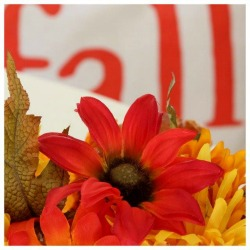 Fun Fall Decor Ideas