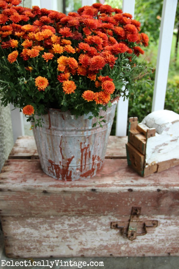 Vintage finds on a #fall porch kellyelko.com
