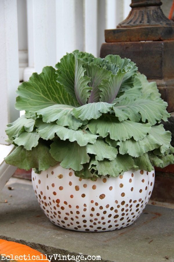 Pumpkin Planter Tutorial - see 2 fun ways to turn those ugly plastic pumpkins into beauties!  kellyelko.com