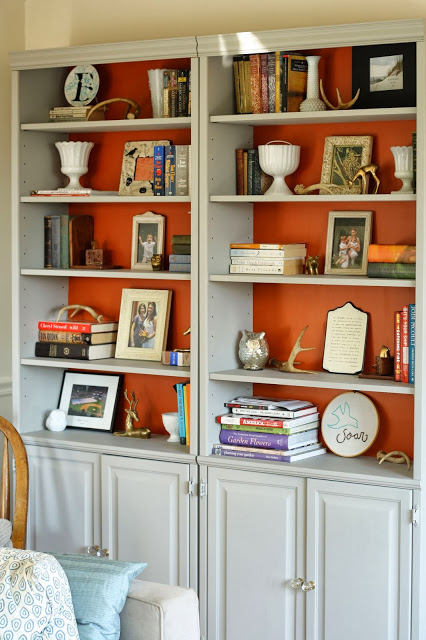 Bookshelves with a bold background color