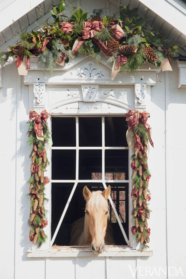 Renovated barn and a Tennessee walking horse