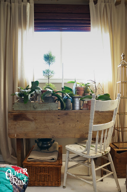Perfect nook for a home garden
