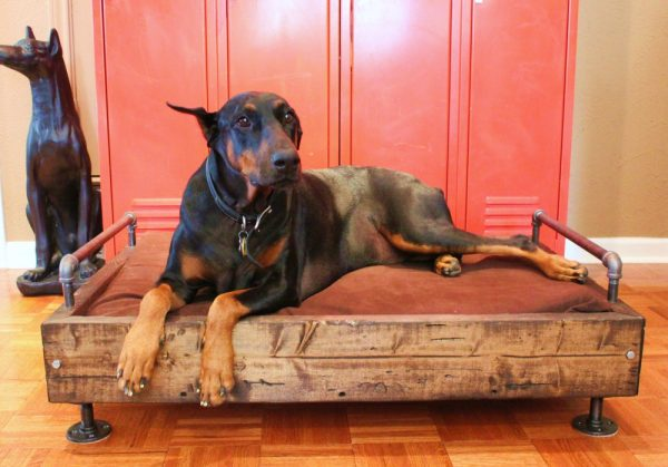 Make an industrial dog bed! eclecticallyvintage.com