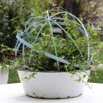 Make a Topiary Orb eclecticallyvintage.com