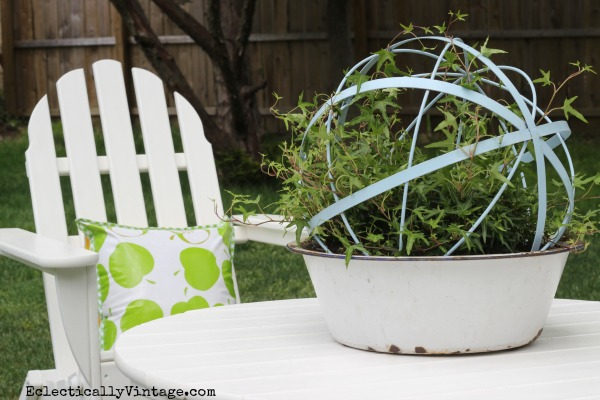 Unique Garden Planters - love this ivy orb in the vintage bowl kellyelko.com