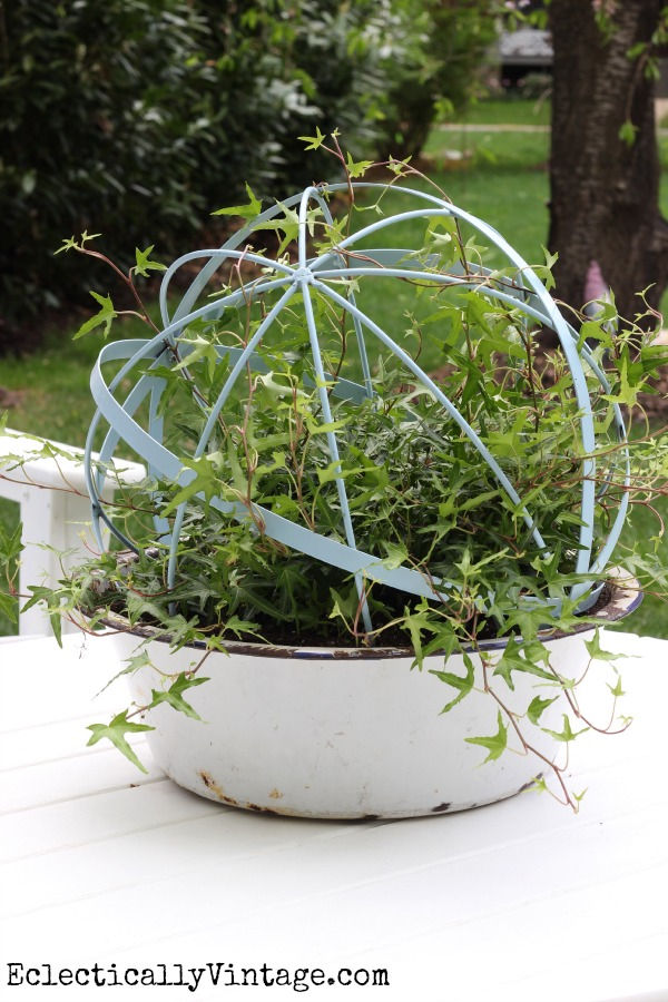 Ivy topiary orb - such a unique planter! kellyelko.com