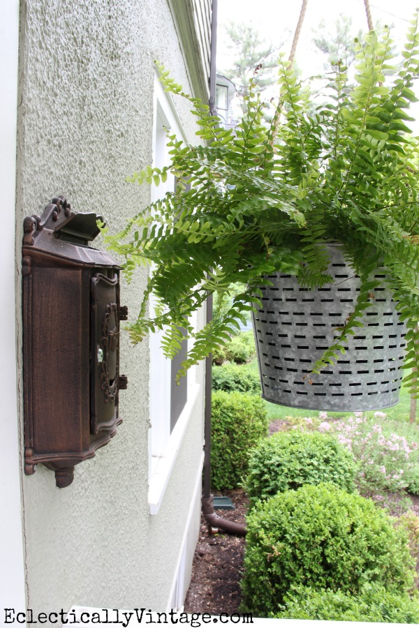 Hanging porch ferns in olive bucket planters - one of the many unique planter ideas on this site! kellyelko.com