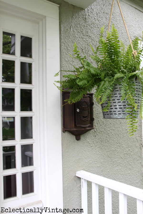 Porch ferns - such a fun hanging planter kellyelko.com