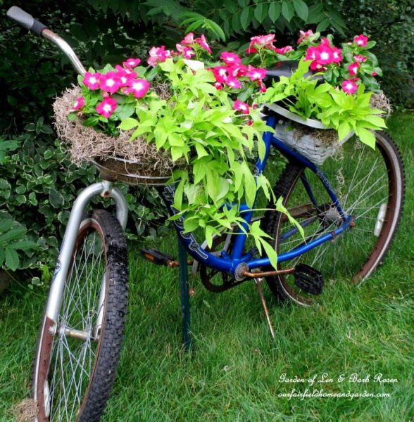 Bicycle planter - one of the many unique ideas in this garden kellyelko.com