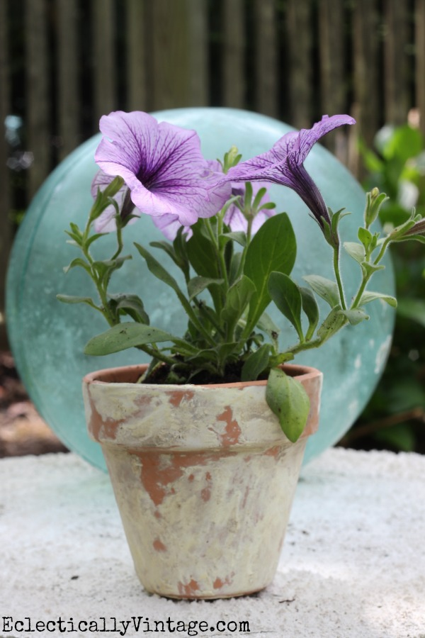 How to age terra cotta pots - takes just minutes! kellyelko.com