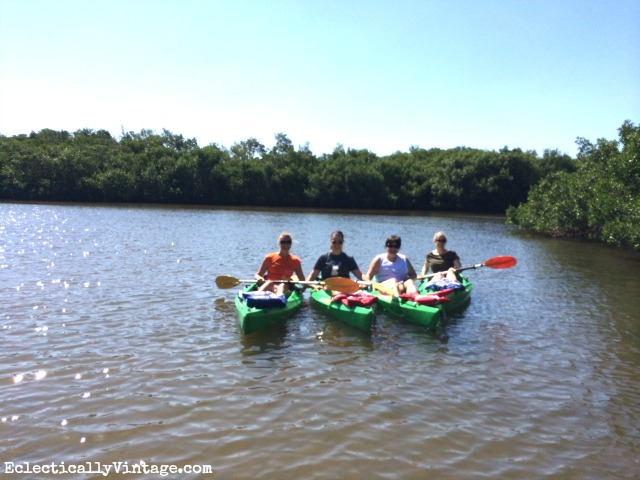 Kayak Tour Anna Maria Island Florida kellyelko.com