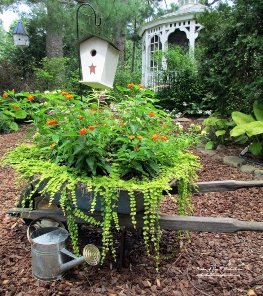 Wheelbarrow planter - one of the unique ideas in this garden tour kellyelko.com