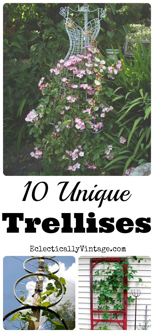 10 Unique Trellis Ideas kellyelko.com