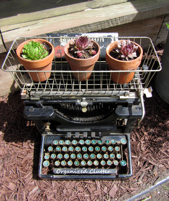 Vintage typewriter planter - one of the unique ideas in this garden kellyelko.com