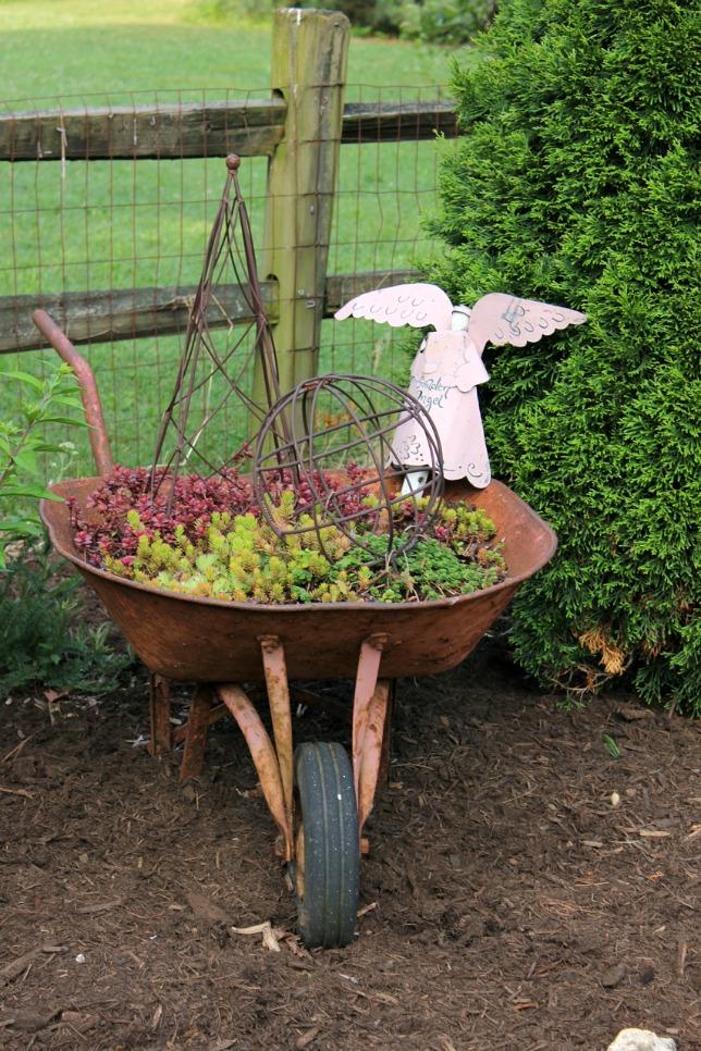 Succulent wheelbarrow planter - what a fun touch to the garden kellyelko.com