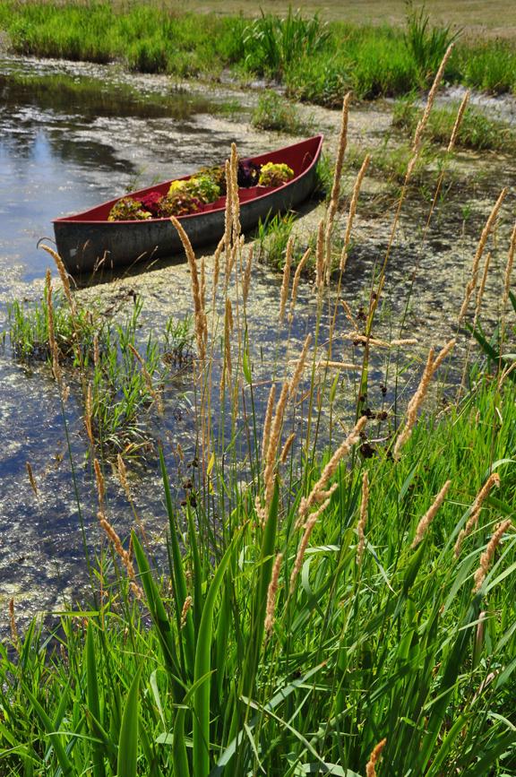 Canoe planter on this creative garden tour kellyelko.com
