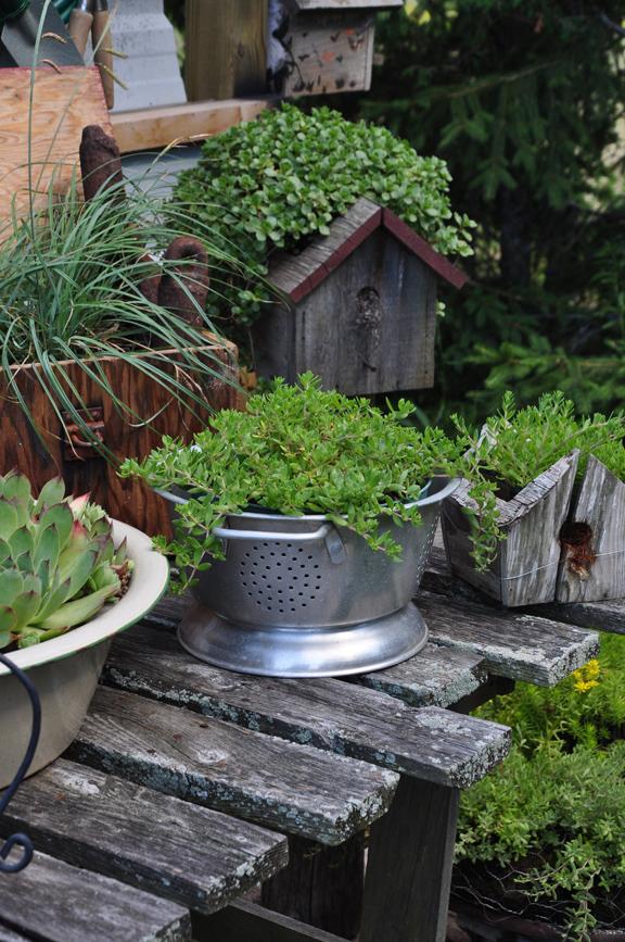 Creative garden container ideas eclecticallyvintage.com
