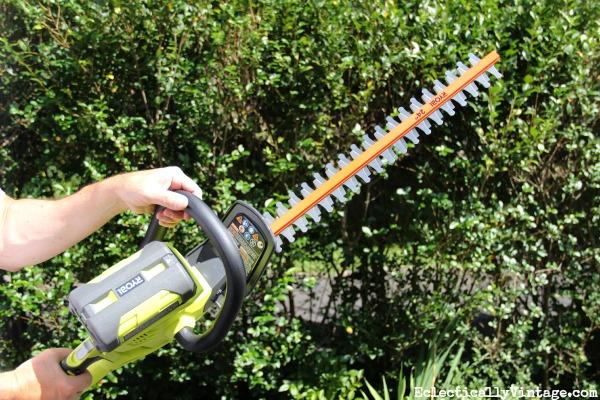 Ryobi 40v hedge trimmer - this thing is amazing! kellyelko.com
