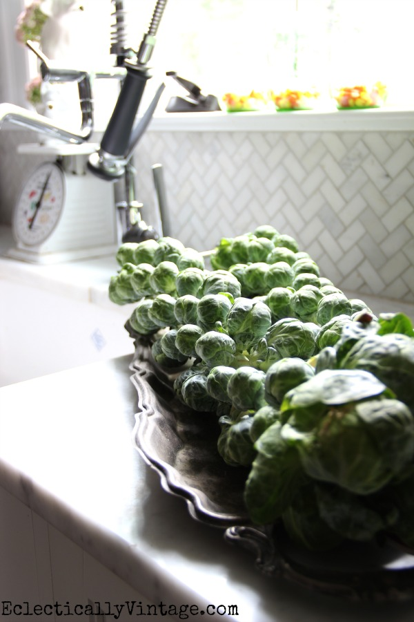 Brussels sprouts on their stalks eclecticallyvintage #EclecticallyFall