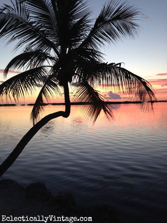 Palm tree sunset in the Florida Keys kellyelko.com