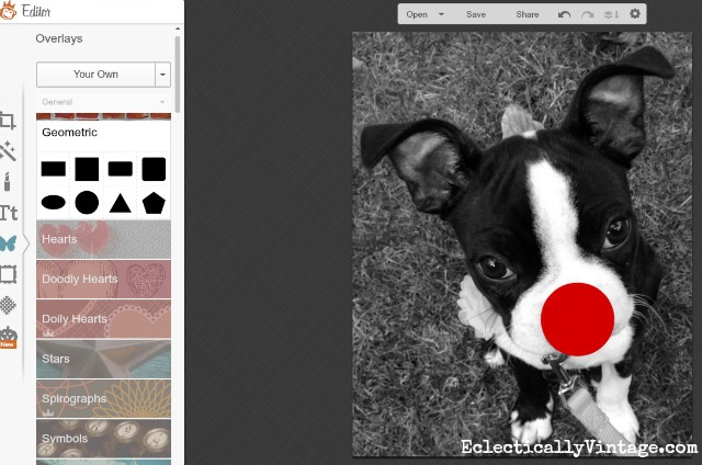 Picmonkey Tutorial - turn your pet's photo into Rudolph the red nosed reindeer! kellyelko.com