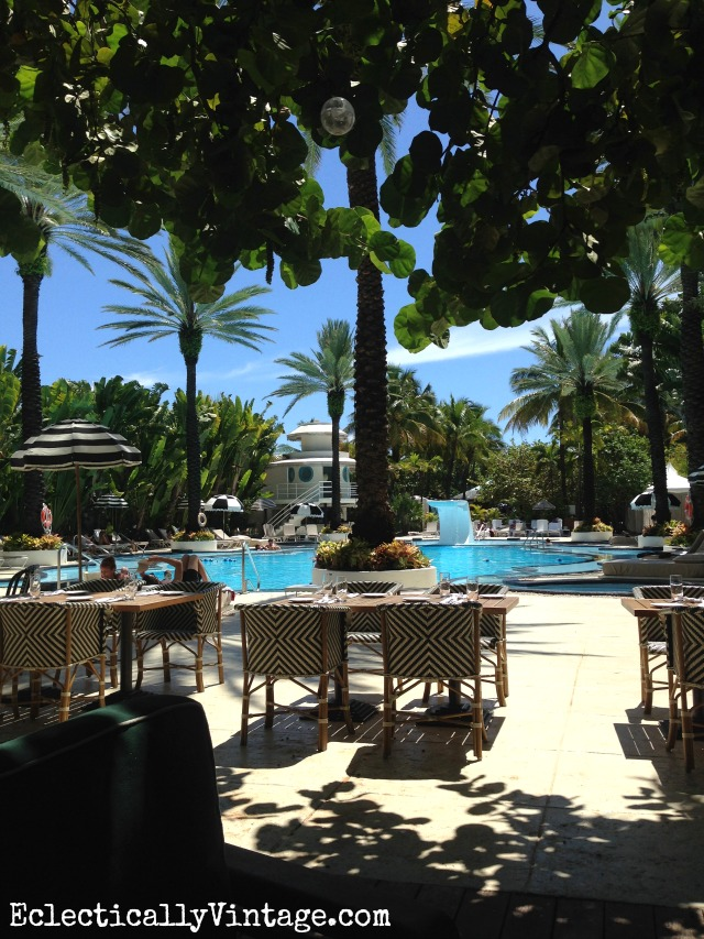 Raleigh South Beach - love the banyan tree in the poolside restaurant kellyelko.com