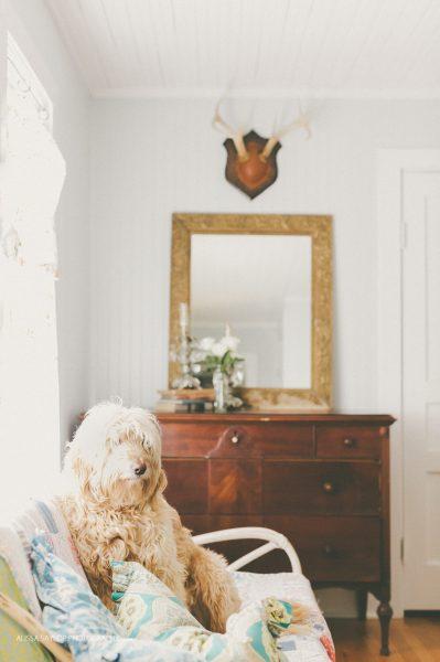 Love the dark vintage chest of drawers against the white beadboard walls kellyelko.com