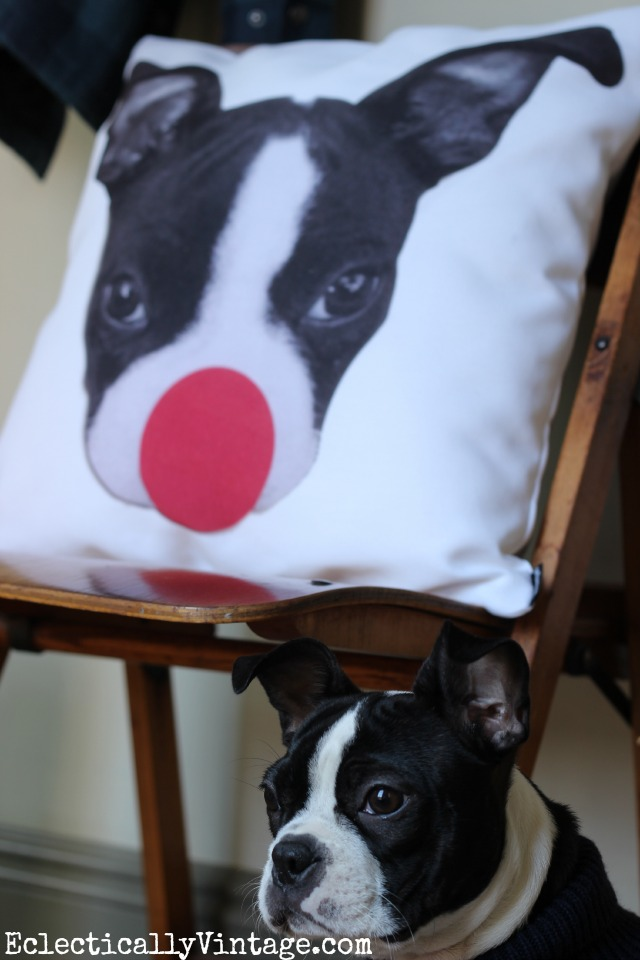 This Boston Terrier Christmas Rudolph the red nose reindeer pillow is so cute! kellyelko.com