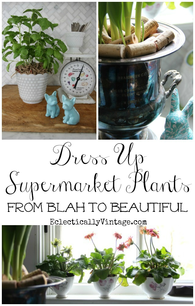Great tips on how to dress up supermarket plants!  kellyelko.com
