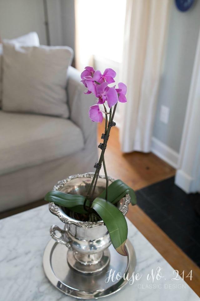 Orchid in a silver bucket kellyelko.com