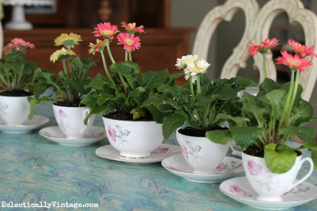 Vintage tea cup planter centerpiece - perfect for Mother's Day, Easter or any spring party kellyelko.com