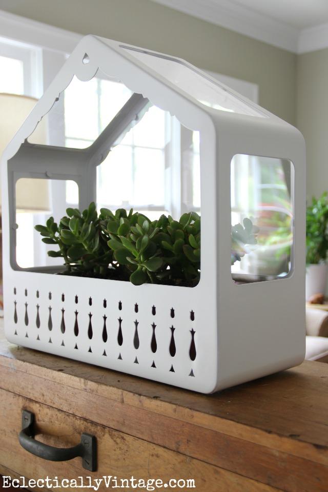 Love this cute little Ikea house terrarium eclecticallyvintage.com