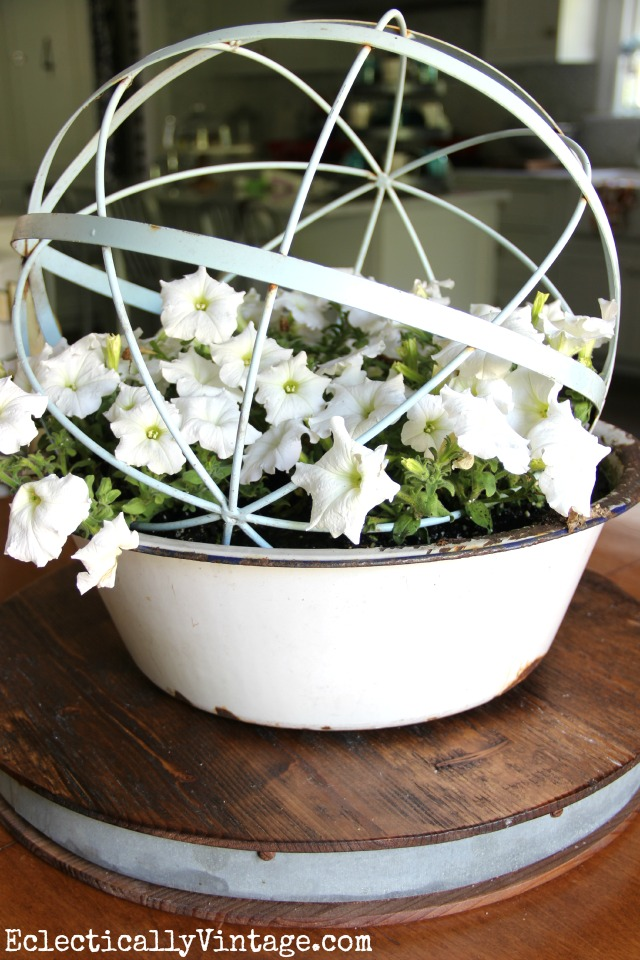 Love this orb planter filled with petunias eclecticallyvintage.com