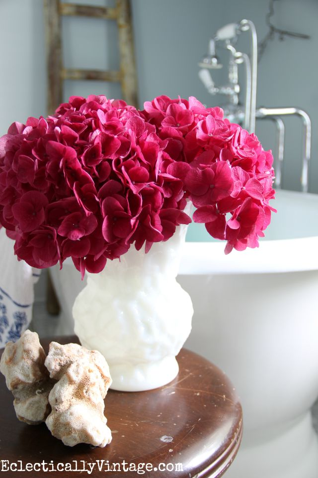These fuscia hydrangeas are such an incredible color! kellyelko.com