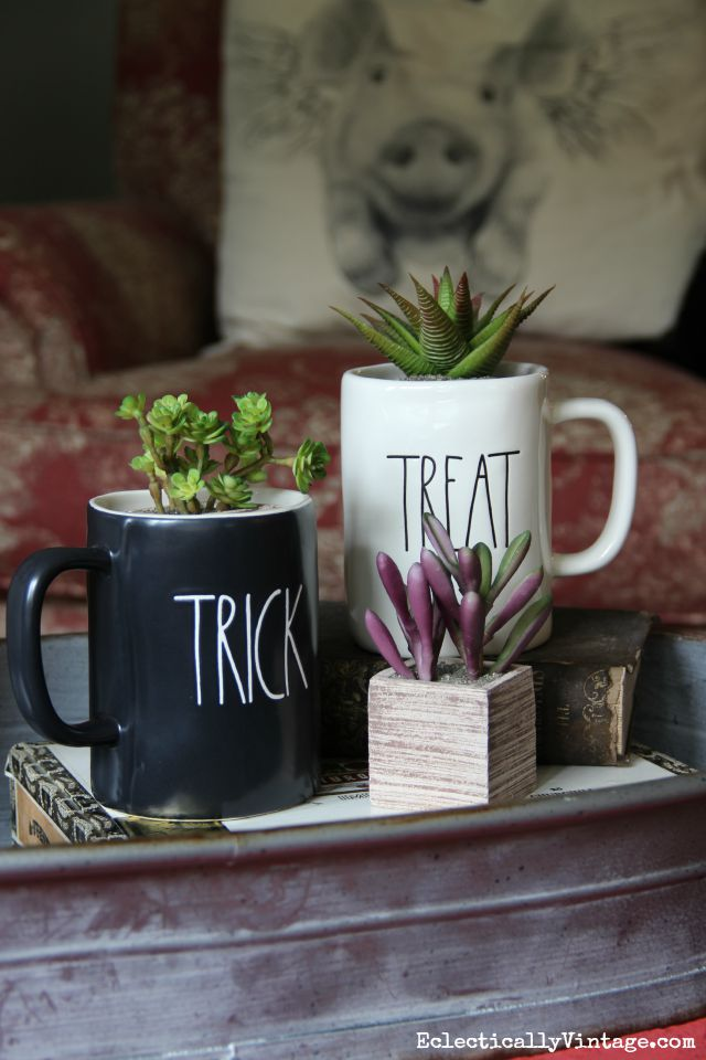 Halloween mugs filled with succulents kellyelko.com
