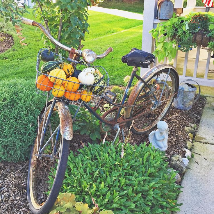 Vintage bike in the garden for fall - love the basket filled with pumpkins and gourds kellyelko.com