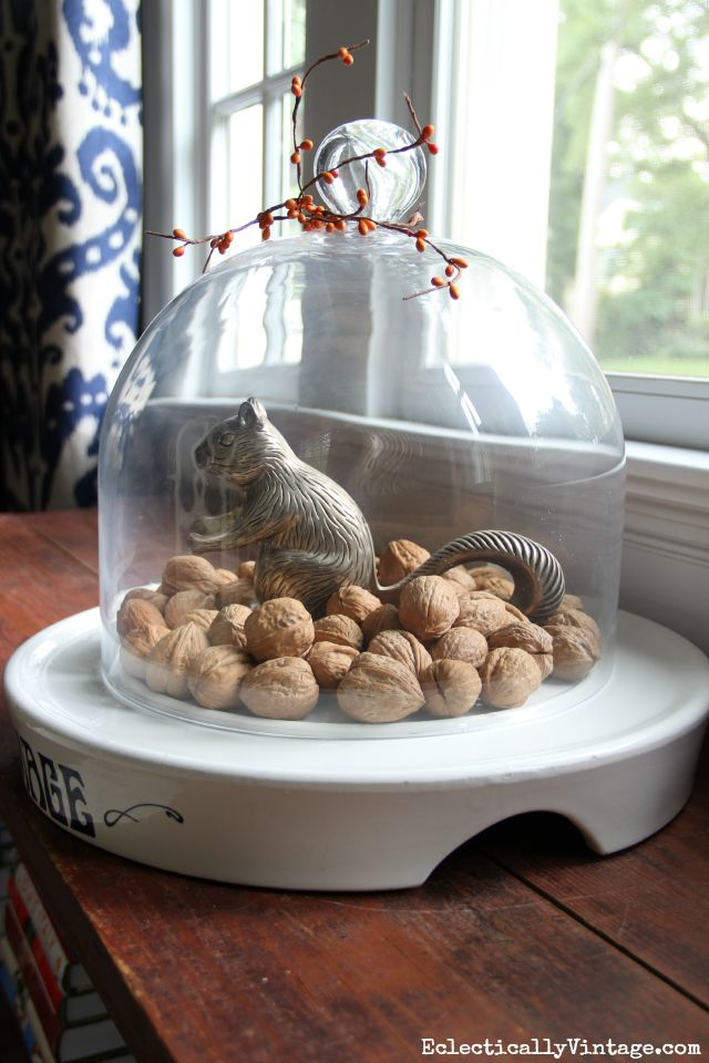 Vintage squirrel nutcracker under a cloche kellyelko.com